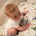 Muslin Blanket- Dinoriffic