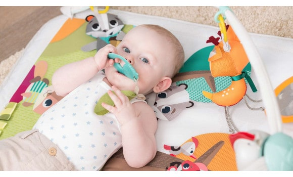 Playgyms & Playmats Into the Forest™ Gymini® Deluxe Pitter Patter Baby NI 6