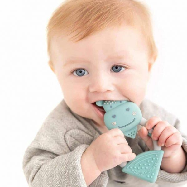Teething Chewy the Hippo Teether Pitter Patter Baby NI 7