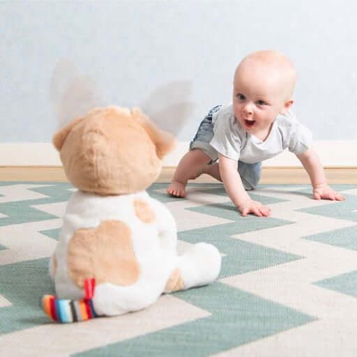 sensory toys Peek-A-Boo Soft Toy – DANNY Pitter Patter Baby NI 6