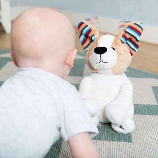 sensory toys Peek-A-Boo Soft Toy – DANNY Pitter Patter Baby NI 7