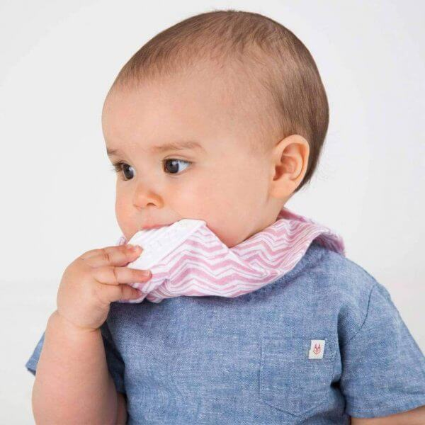 Teething Cheeky Chompers – little box of of cheekiness -Rosy days Pitter Patter Baby NI 5